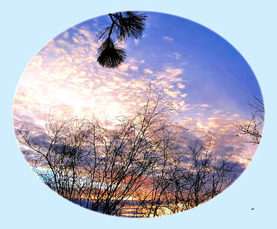 Photograph - Calm December Sunset by Will Borden