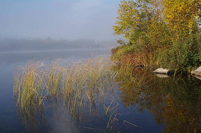 Photograph - Calm Morning by Sheila Byers