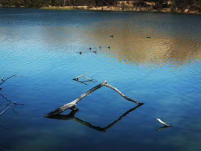 Photograph - Calm Water At The Lake by Lucinda Walter