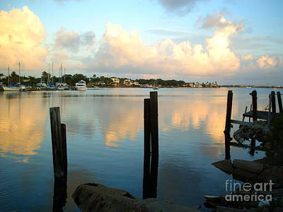 Photograph - Calm Waters by Audrey Van Tassell