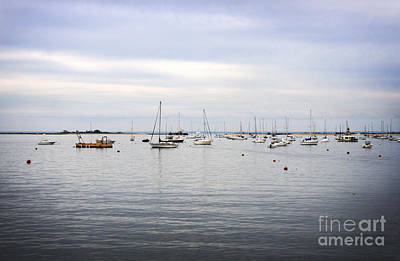 Photograph - Calmness In The Harbor by Paul Cammarata