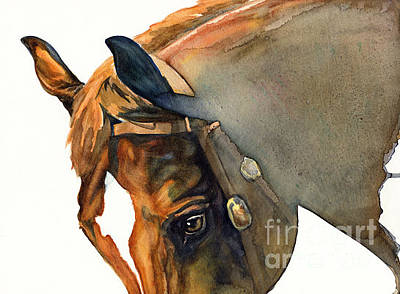 Watercolor. Equine. Bridle Painting - Calypso by Joanna Zeller Quentin