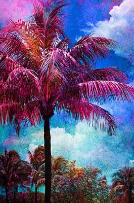 Gouache Photograph - Calypso by Laura Fasulo