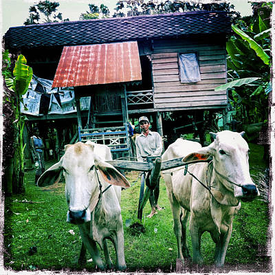 Photograph - Cambodian Farmer by Randy Green