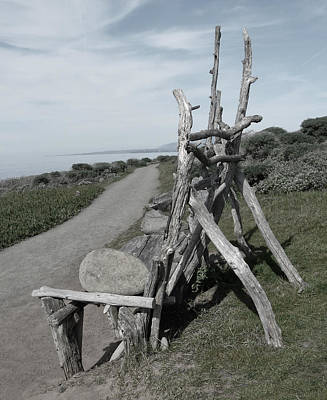 Cambria Driftwood Bench 2 Art Print