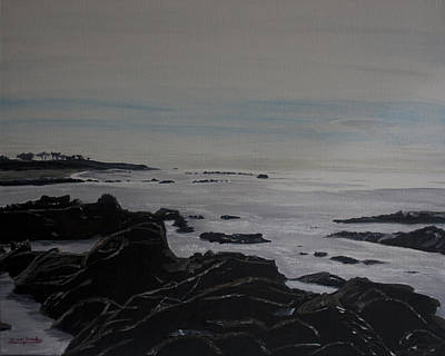 Cambria Tidal Pools Art Print by Ian Donley