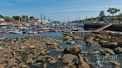 Photograph - Camden Harbor by Sharon Seaward