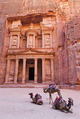 Middle East Photograph - Camel At The Facade Of Treasury (al by Keren Su