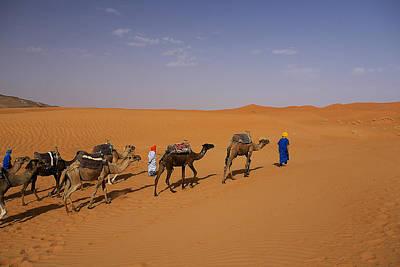 Africa Photograph - Camel Caravan by Ivan Slosar