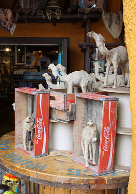 Photograph - Camel Cola by David Nicholls