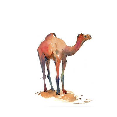 Camel Wall Art - Painting - Camel I by Sophia Rodionov