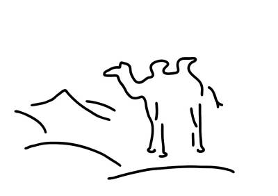 Sahara Drawing - Camel In Desert by Lineamentum