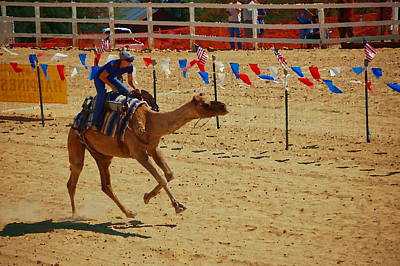 Photograph - Camel Races by Tamyra Crossley