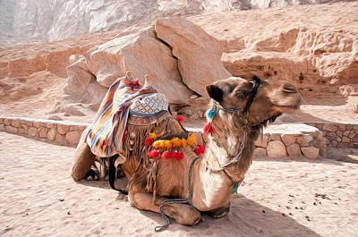 Dromedary Digital Art - Camel Taxi by Roy Pedersen