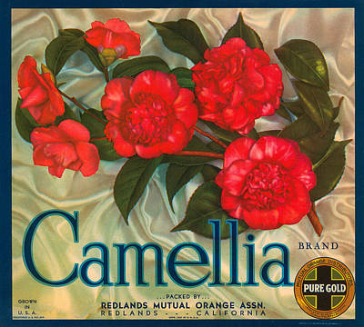 Camellia Digital Art - Camellia Crate Label by Label Art