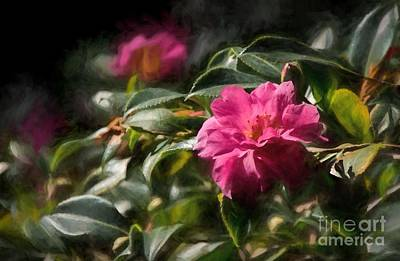 Photograph - Camellia In Pink by Peggy Hughes