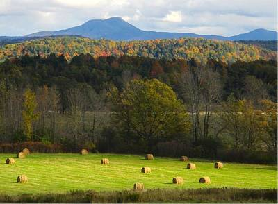 Photograph - Camel's Hump In October by Ishana Ingerman