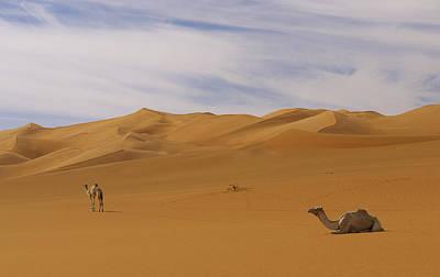 Camels Art Print by Ivan Slosar