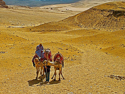 The Plateaus Digital Art - Camels Nuzzling On The Giza Plateau-egypt  by Ruth Hager