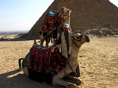 Photograph - Camels With Master - Cairo Egypt by Jacqueline M Lewis