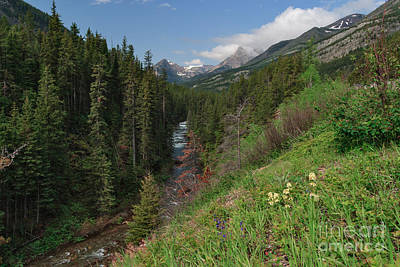 Photograph - Cameron Creek by Charles Kozierok