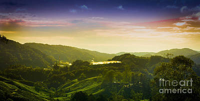 Cameron Highlands Art Print by Receb Parsel