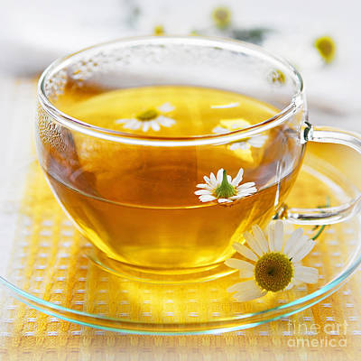 Still Life Royalty-Free and Rights-Managed Images - Chamomile tea by Elena Elisseeva