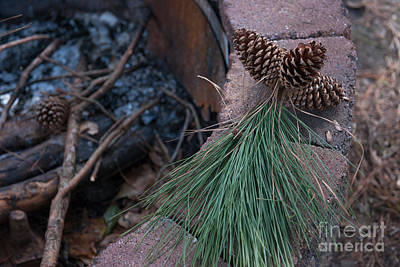 Photograph - Camp Fire Memories by Dale Powell