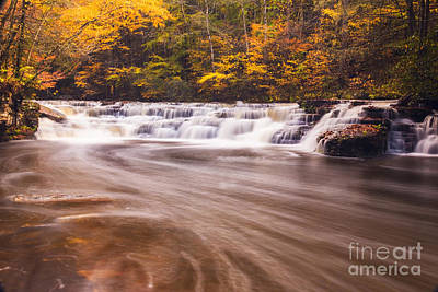 Photograph - Campbell Falls In Autumn by Melissa Petrey