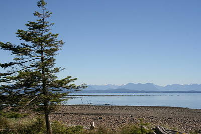 Photograph - Campbell River by Betty-Anne McDonald