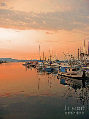 Campbell River Marina Art Print by Nancy Harrison