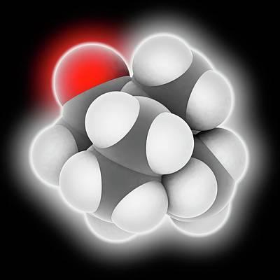 Camphor Molecule Art Print by Laguna Design