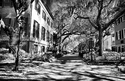 College Of Charleston Photograph - Campus Walk by John Rizzuto