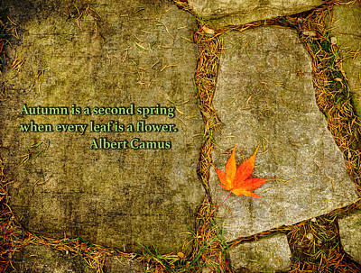 Photograph - Camus Quote Autumn Is A Second Spring by Marianne Campolongo
