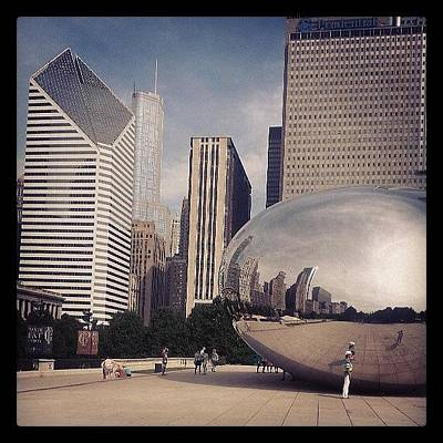 Photograph - Can You Have Too Many Pics Of The Bean? by Lauri Novak