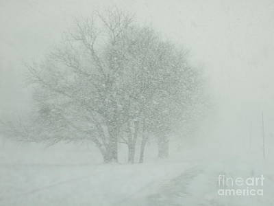 Art Print featuring the photograph Can You See by Deborah DeLaBarre