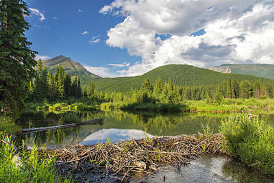 Beaver Pond Photograph - Canada, British Columbia by Chuck Haney