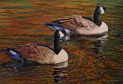 Canada Goose Painting - Canada Geese by Ken Everett