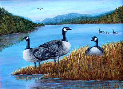 Art Print featuring the painting Canada Geese - Lake Lure by Fran Brooks
