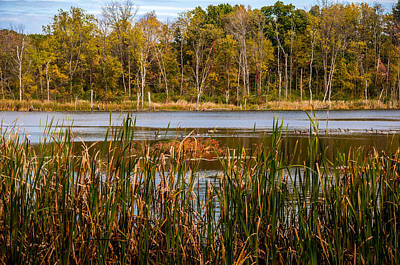 Photograph - Canada Geese On An Autumn Lake by Gene Sherrill