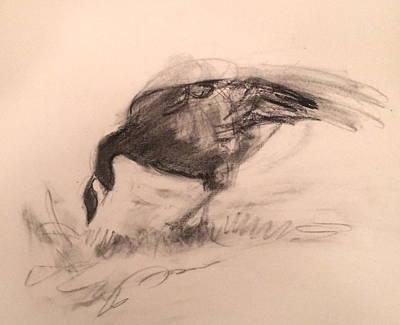 Canada Goose Art Print by Alaskan Raven Studio