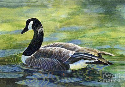 Colored Pencil Painting - Canada Goose Reflections by Sharon Freeman