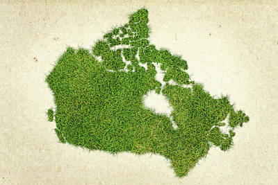 Canadian Mixed Media - Canada Grass Map by Aged Pixel