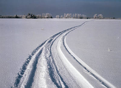 Large Format Photograph - Canada, Manitoba, Tire Tracks In Snow by Jaynes Gallery