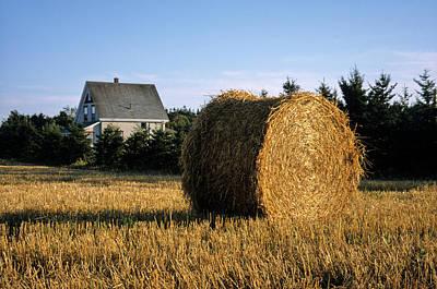 Bale Photograph - Canada, Prince Edward Island, Hay by Ann Collins