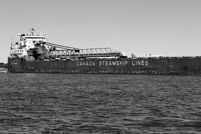 Photograph - Canada Steamship Lines Bw by Mary Bedy