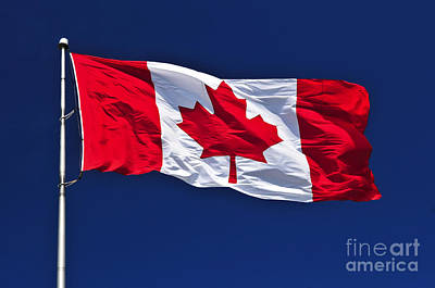 Flagpole Photograph - Canadian Flag by Elena Elisseeva