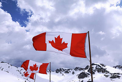Photograph - Canadian Flags At Whistler by Charline Xia