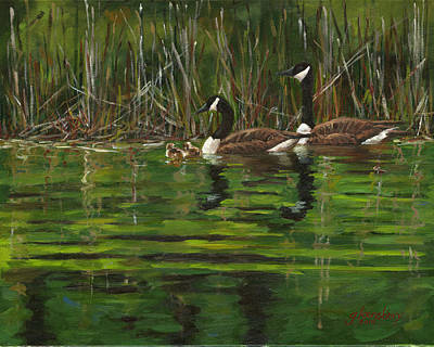 Canadian Geese Painting - Canadian Geese by Grant Lounsbury