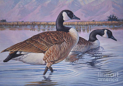 Canadian Geese Painting - Canadian Geese by Rob Corsetti